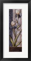 Framed Magasin Floral