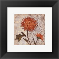 Orange Mum Framed Print