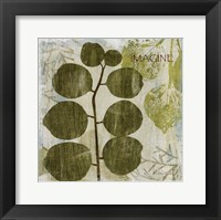 Woodland Thoughts I Framed Print