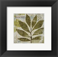 Woodland Thoughts II Framed Print