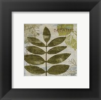 Woodland Thoughts IV Framed Print