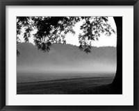Framed Fog in the Park I