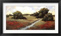 Framed Kissimmee Grasslands