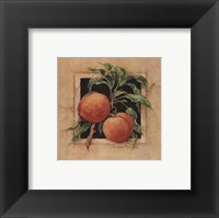 Peach Square Framed Print