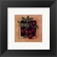 Framed Cherry Square