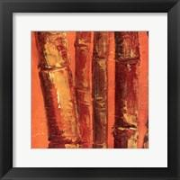 Bamboo Columbia III Framed Print