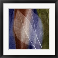 Leaf Structure I Framed Print