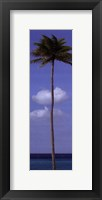 Sky Beach I Framed Print