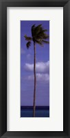 Sky Beach II Framed Print