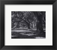 Broadfield I Framed Print