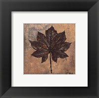 Framed Maple III