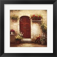 Framed Rustic Doorway III