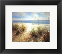 Across the Dunes Framed Print