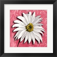 Framed Blooming Daisy III
