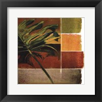 Morning Light I Framed Print