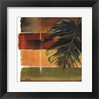 Morning Light II Framed Print