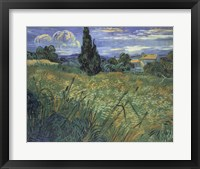 Framed Green Wheat Fields