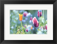 Framed Poppy Design