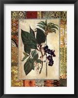 Framed Garden Tropicalismo II
