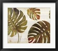 Organic II Framed Print