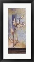 White Lilies II Framed Print