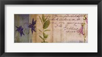 Wildflower Panel I Framed Print