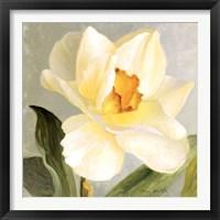 Framed Daffodil Sky I