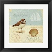 Natural Seashore I Framed Print