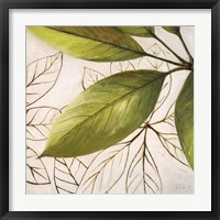Fresh Leaves I Framed Print