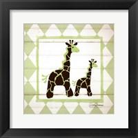 Giraffes Framed Print