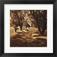 Ash Lawn II Framed Print