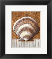 Vintage Shell III - mini Framed Print