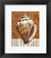 Framed Vintage Shell II - mini