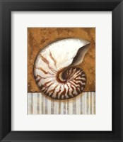 Vintage Shell I - mini Framed Print
