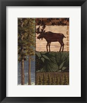 Nature Trail I Framed Print