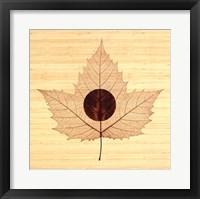 Framed Yin/Bamboo