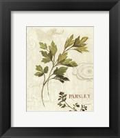 Aromatique I Framed Print