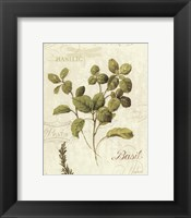 Aromatique III Framed Print