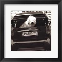 Framed Paris Dog I