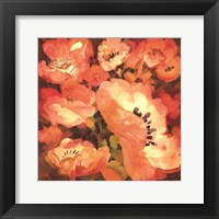 Framed Pink Poppies II