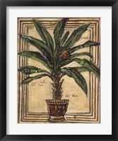 Framed Potted Palm II
