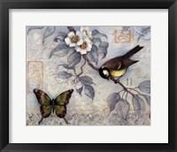 Framed Blue Bird & Butterfly