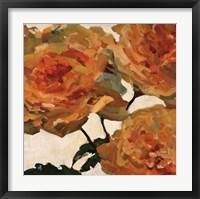 Tangerine Dream II Framed Print