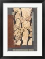 Framed Gladioli 1