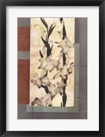 Framed Gladioli 2