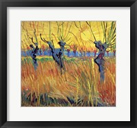 Framed Pollarded Willows and Setting Sun, 1888
