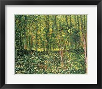 Trees and Undergrowth, 1887 Framed Print