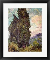 Framed Cypresses, 1889