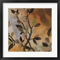 Sundown Bronze II Framed Print