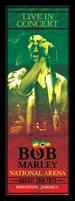 Framed Bob Marley - Concert